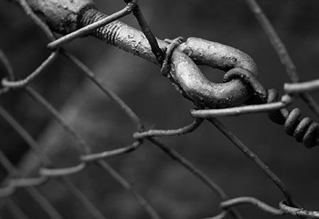 fence-links